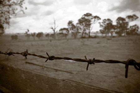 desolate: barbed wire fence borders the old desolate farmland