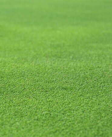 the finely manicured green grass or turf from a golf hole green