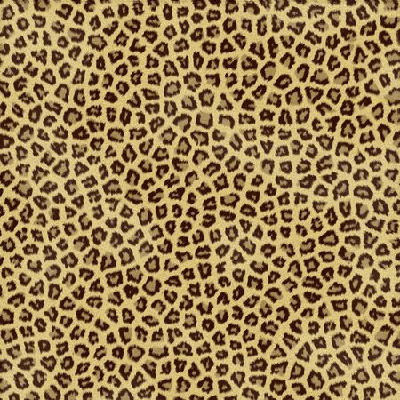 spotted fur: an large illustration of spotted leopard or jaguar skin or fur Stock Photo