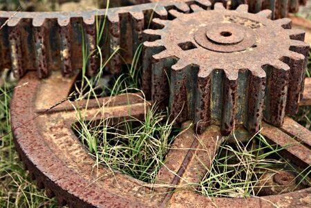 rusting: old cogs and gears lay rusting in the grass