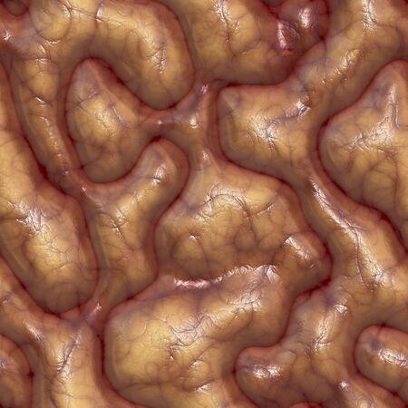 a large rendered illustration of close up brains illustration