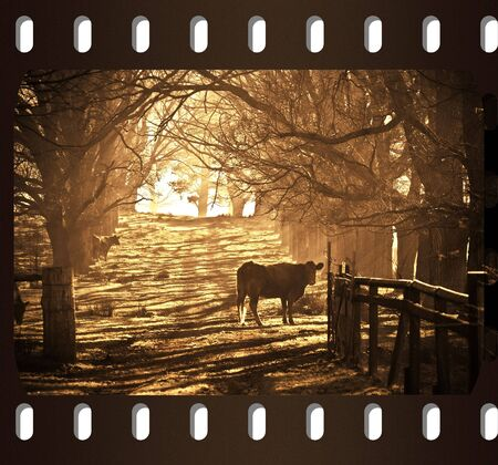 an old photo film frame with sepia rural scene photo