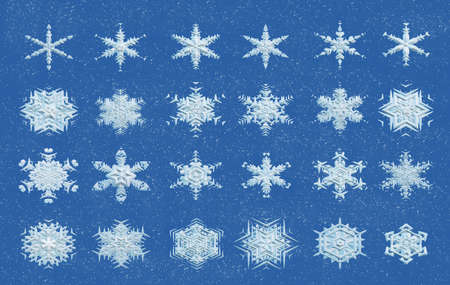 organised: collection of 3d snowflakes on blue snowy background