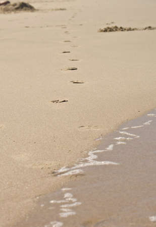 footprints at the beach come out of the water and walk away photo