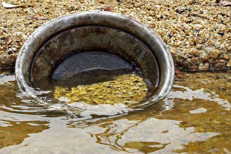 prospector: Encontrado pepitas de oro pan de oro en el agua  Foto de archivo