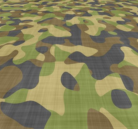 conceal: large background image of camouflage material spread out