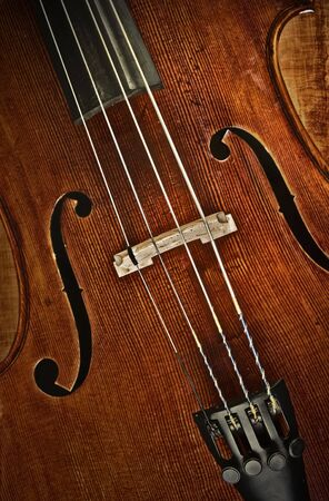 great image of a cello or violin