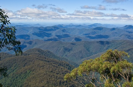 forested: great image looking of the forested mountains  Stock Photo