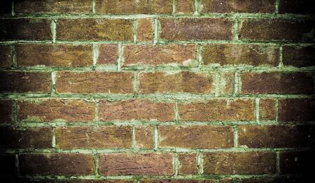 image of an old grungy brick wall