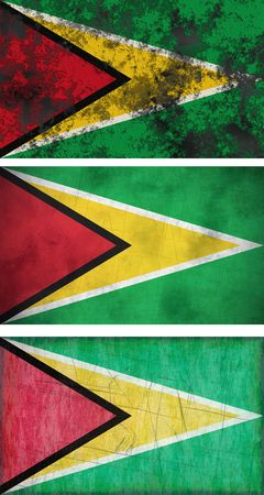 Great Image of the Flag of Guyana Stock Photo - 6450704