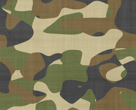 camoflage: great image of camouflage fabric with space for text