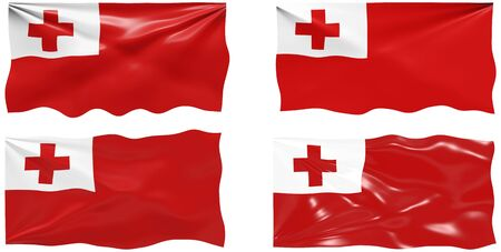 Great Image of the Flag of Tonga Vector