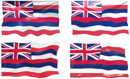 Great Image of the Flag of hawaii Vector