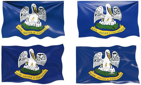 Great Image of the Flag of Louisiana Vector