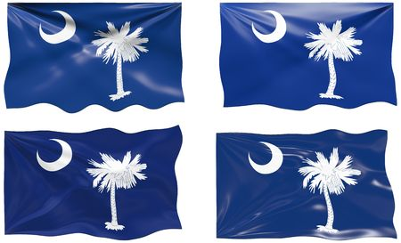 Great Image of the Flag of South Carolina Stock Vector - 6874823
