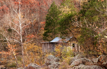 old settlers cabin in the forest photo