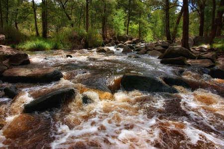 rushing water: rushing water in river
