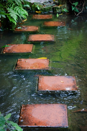 stepping stones across stream