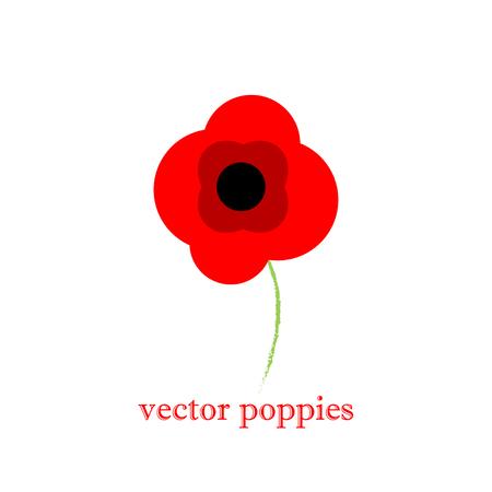 amapola: Dibujado a mano las flores de fondo. Amapolas frame.vintage fondo rojo estampado de flores Vectores