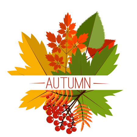 Autumn typographical background with autumn leaves