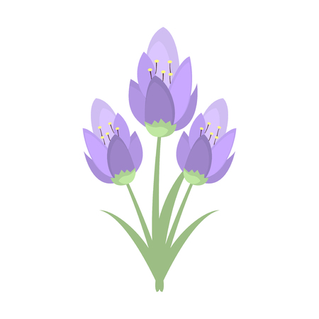 Early spring purple crocus and snowdrops nature beauty flowers early spring purple crocus and snowdrops nature beauty flowers vector crocus snowdrops flower color and mightylinksfo