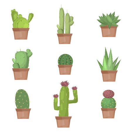 Cactus collection illustration. Cactus nature plant desert isolated mexico tropical art. Cactus nature plant succulent set. Tropical art cactus collection. Mexican cactus graphic botany cactus. Vectores