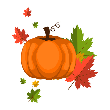 Pumpkin over white background vector illustration.