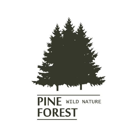 Fir tree wood oak pine logo nature vector design camping natural outdoor adventure vintage elements, badges, labels and logotype templates for your business. Wild travel park plant symbol. Illustration