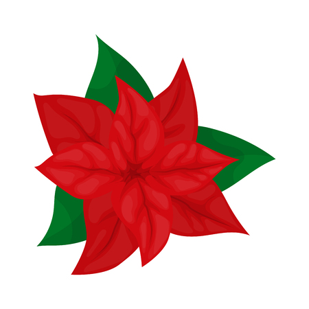 Poinsettia flower christmas plant vector illustration. Merry christmas holly garland. Holiday symbol. Beautiful poinsettia flower, great design for any purposes. Floral border. Holiday wreath.