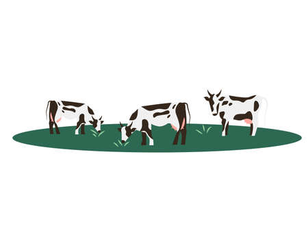 Cow farm animal vector illustration.