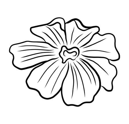 Hand-drawing floral background. Line art flower Vectores