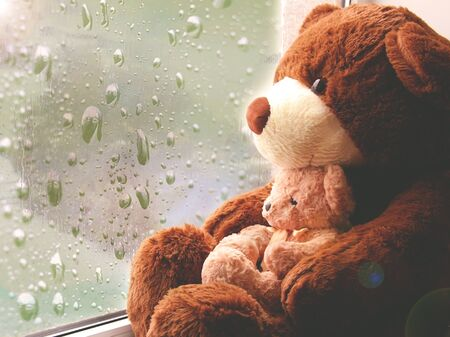 A brown toy bear sits on a window and looks at raindrops on the glass.