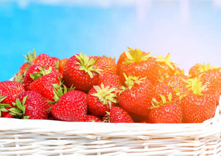 Ripe fresh strawberries in a wicker white basket after collecting sweet red berries on a background of blue water.