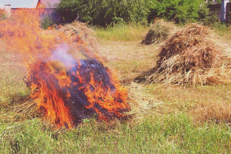 Big fire. Dense mowed grass burns in a field in a village in summer. Harvesting weeds in the garden.