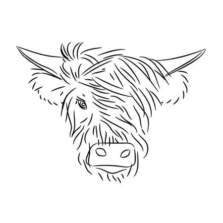 Fashionable bull head with bangs on a white background. The symbol of 2021 is the year of the white metal Ox.
