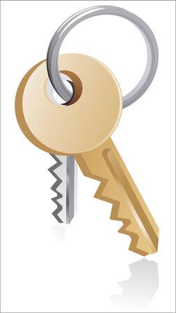 Two silver gold keys illustration  Vector