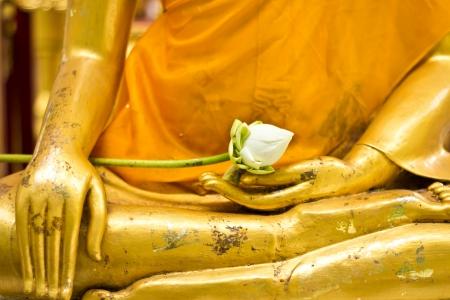 Lotus in hand image of buddha photo