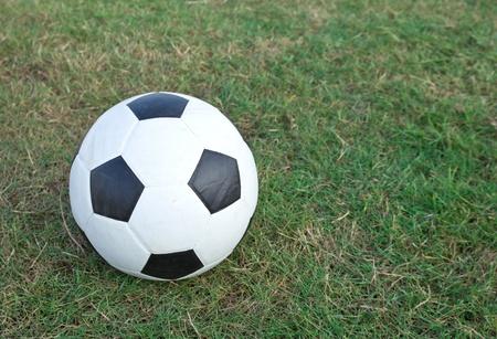 enjoymant: Soccer ball on the green grass