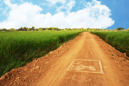 dirt road: ground road and summer sunny day Stock Photo