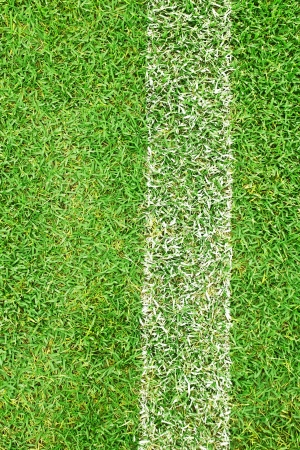 White stripe on the green grass field photo