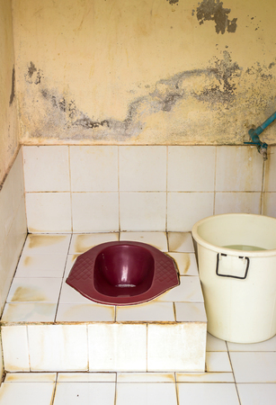 latrine: Old toilet  in the rural home