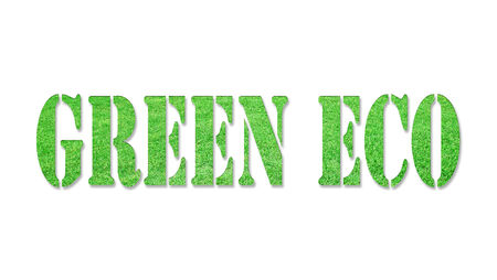 The word GREEN ECO from the green grass, isolated on white background photo