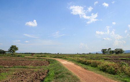 agricultural area: local road in agricultural area