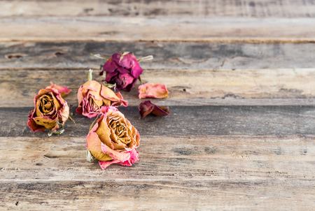 beautiful anniversary: Beautiful dried roses on old wooden background Stock Photo