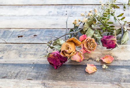 Close up dry rose on wooden background Stock Photo