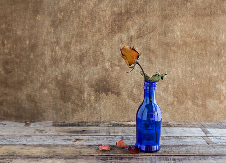 Still life photography : Dry rose in blue bottles on wooden background