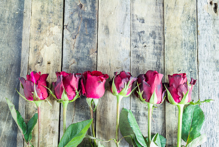 Fresh red rose on wooden background. Valentines Day background