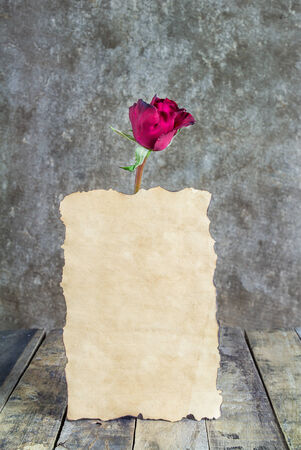 Fresh red rose and old paper on a wooden background. Holidays romantic background