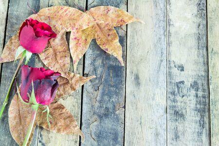 hojas secas: Cierre de la rosa roja y hojas secas sobre fondo de madera