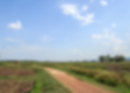 agricultural area: Blur background with local road in agricultural area